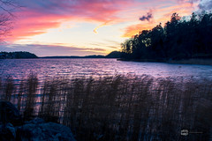 November Sunset (davidshred) Tags: d3300 sunset sweden sverige solnedgng water wood colourfull epic suynset color paradise