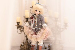 Unveil (Tee_see_) Tags: doll mdd dollfie dollfiedream