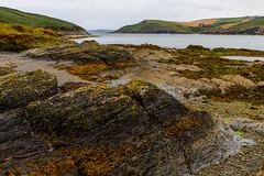 bay (ToDoe) Tags: ireland irland bay bucht felsen rock strand beach bank oysterhaven meer sea kiesel kieselsteine algen muscheln shells
