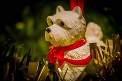 Xmas Westie (MacBeales) Tags: xmas tree decoration westie dog terrier harrods canon eos 70d macro closeup white tinsel