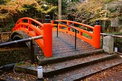 DSC02799 (MrSUIZOU) Tags: 京都 紅葉 北野天満宮 平野神社 十月桜