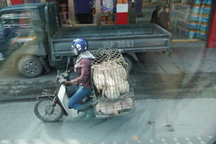 Transport Pigs (steve_whitmarsh) Tags: vietnam asia orient hanoi bike street animal pig