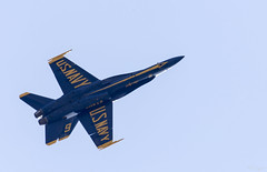 Blue Angels Over House (rjseg1) Tags: chicago hornet practice blueangels fa18 airwatershow