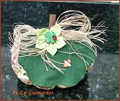 20150816_212945 (Artesanato com amor by Lu Guimaraes) Tags: artesanato fuxico decoração tecido enfeitecozinha