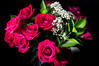 IMGP4443.jpg (PenTex) Tags: birthday red plant lightpainting flower love blackbackground leaf stem decoration dramatic romance petal flirting dating backgrounds bouquet sensuality valentinesday redroses vibrantcolor roseflower bedofroses studioart