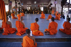 Many novice monks study the Theravada school (Bn) Tags: life old school portrait people man face thailand religious pain amazing search movement god nirvana expression bangkok buddha buddhist religion crying deep monk buddhism thoughts end donation population sensuality wat enlightenment 95 suffering powerful wrinkles ending siddhartha serve extremes craving teachings relinquish thailands theravada thung officiants khru