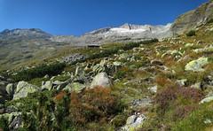 Gießener Hütte 2215m (ernst.weberhofer) Tags: hochalmspitze säuleck giesenerhütte schneewinkelspitze