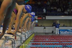 Scottish National Team Championships 2015 (scottishswim) Tags: swimming team scottish championships tollcross scottishswimming