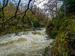 20151115-_1150472.jpg (IanRolo) Tags: bridge river y waterfalls betwsycoed betws coed snowdonia miners afon minersbridge llugwy afonllugwy riverllugwy