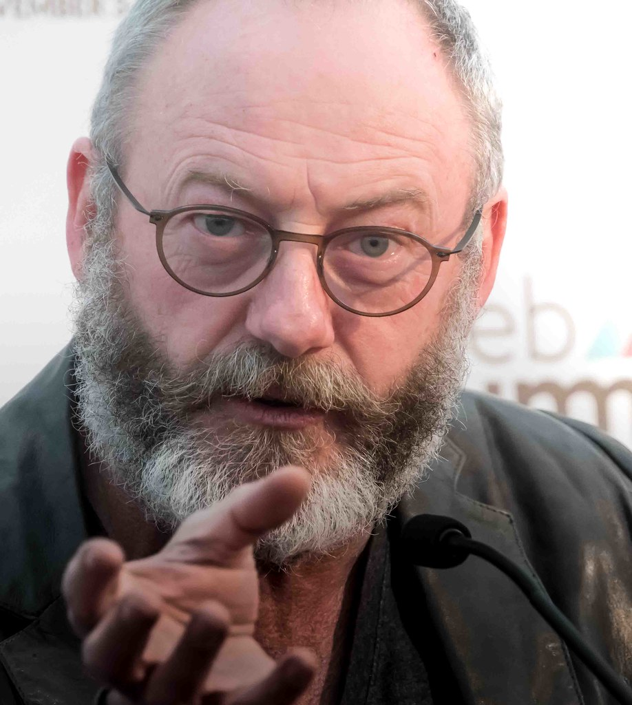 WEB SUMMIT 2015 - LIAM CUNNINGHAM MEETS THE PRESS [ACTOR]-109588