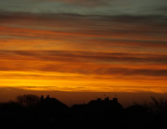 Another new dawn..... hope rising with the intensity of the colour... from my window... (Sue - happy sparrow) Tags: sunrise dawn sky clouds weather winter houses roof aerials tv portland dorset susanshaw