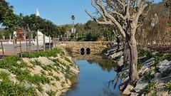 DSC_0212_1600 (a.marquespics) Tags: parque portugal rio água nikon ponte jardim reflexos pedra árvores d610 bombarral nikkoraf2880mmf3356g buddhaeden cursodeágua
