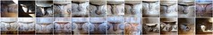 Ss. PETER & PAUL, SALLE, NORFOLK - 15C. MISERICORDS (Norfolkboy1) Tags: england norfolk salle parishchurch sspeterpaul misericords