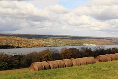 By the Finger Lakes (dennoit) Tags: autumn lake newyork fall farm roll hay fingerlakes seneca lakeseneca