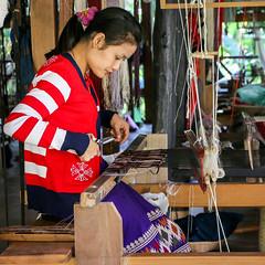 A woman weaving by traditional style, Luang Prabang, laos (inchiki tour) Tags: travel photo asia southeastasia traditional laos weaving lao luangprabang handcraft  handweaving louangphrabang handweave        ockpoptok