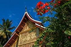 Wat Xieng Thong with Bougainvillea, Luang Prabang, laos (travelingmipo) Tags: travel architecture temple photo asia southeastasia bougainvillea  laos  lao luangprabang watxiengthong  louangphrabang
