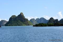 D72_7560 (Tom Ballard Photography) Tags: vietnam halongbay tourboats bayclub 20151118