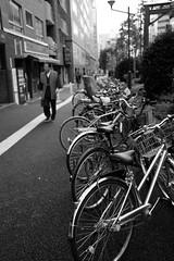 Bike lining up in the main pedestrian street of Shinjuku /  (Andreas Liudi Mulyo) Tags: bicycle japan tokyo shinjuku