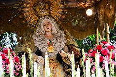 Nuestra Seora de la Esperanza Macarena (Fritz, MD) Tags: procession intramuros intramurosmanila prusisyon grandmarianprocession marianprocession nuestraseoradelaesperanzamacarena marianevents igmp2015 intramurosgrandmarianprocession2015