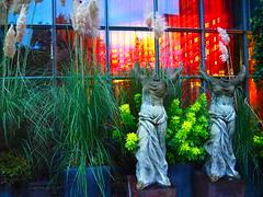 Nike von Samothrake (1elf12) Tags: engel kln cologne germany deutschland hotel savoy nikevonsamothrake statue flgel kopflos ohnekopf colourful