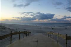 sunset walk (Elly Snel) Tags: ameland eiland island nl boardwalk beach strand sunset zonsondergang people walk lopen clouds wolken blue blauw