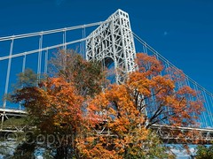 George Washington Bridge over the Hudson River, New Jersey-New York (jag9889) Tags: jag9889 usa foliage bridge waterway newjersey georgewashingtonbridge 20161024 bergencounty tower hudsonriver fortlee henryhudsondrive autumn anniversary outdoor 2016 07024 bridges bruecke brcke colors crossing fall gw gwb gardenstate infrastructure k007 landscape nj pont ponte puente punt river span structure suspensionbridge unitedstates unitedstatesofamerica water zip07024 us