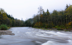When The Views Are Free... (John Westrock) Tags: nature trees overcast longexposure autumn river canoneos5dmarkiii canonef1635mmf4lis washington pacificnorthwest