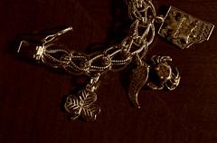 Lucky Charms (Cindy's Here) Tags: luckycharms charmbracelet bracelet shamrock crab courtenay alberta mapleleaf canon sepia macro 116 26 14365