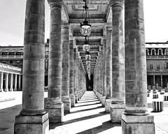 Direction Infinité/Columns with no End (floressas.desesseintes) Tags: paris palaisroyal colonnes columns arche arc säulen bogengang impressionen schwarzweis