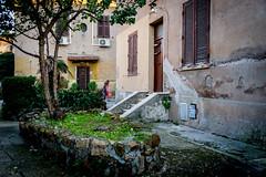 (massimopisani1972) Tags: garbatella roma rome italia italy nikon 28300 quartieregarbatella cortile massimopisani massimo pisani d610 20300