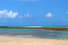 Serrambi-Piscinas Naturais (Carlos Amorim (Camorim10)) Tags: serrambi praia piscinas naturais ipojuca pernambuco nordeste brasil gua mar cu areia