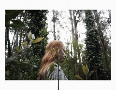 (▲·stardust) Tags: diana girl chica woods bosque plants plantas verde green lost perdida life vida trees arboles redhaired pelirroja red rojo naive marco borders collage