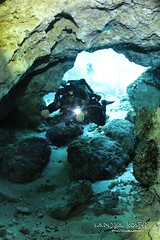 IMG_6907 (2) (SantaFeSandy) Tags: ballroom diving divers derek covington rebreather can cavern cave canon camera catfish sandrakosterphotography sandrakosterphotographycom sandykoster sandy sandra santafesandysandrakosterphotographycom sandrakoster swimmers scuba springs colors caves