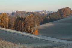 Nature is ready for winter... (karlmayer56) Tags: traunstein dachstein salzkammergut nebelstimmung november sonnenuntergang atardecer panorama
