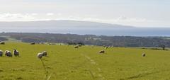 Ayrshire, Scotland. Ayr Bay. (Phineas Redux) Tags: ayrshirescotland firthofclydescotland ayrshire scotland