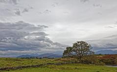 5DS_1744_DxO (john_trefonen) Tags: linmore beach clouds landscape seascape