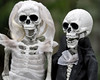My Kind of Wedding [44/52] (Jam-Gloom) Tags: halloween spooky hallowseve halloweve allhallows olympusomdem5 olympusomd olympusuk 60mm28 60mmmacro28 60mmmacro bokeh bokehful bokehlicious depthoffield dof scary creepy autumn autumnal fall october skeleton skull skele skelly brideandgroom mykindofwedding bride groom hauntingly haunting doll skeletondoll toy week44 project52 52weeks 52weekproject project weeks week 52 44