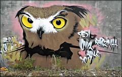 Coimbra 2016 - Sociedade de Porcelanas 07 (Markus Lske) Tags: portugal coimbra sociedadedeporcelanas art arte kunst graffiti graffito bild streetart urbanart urban street strase lueske lske