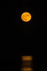 Supermoon over the ocean (jim sonia) Tags: sandypoint supermoon moon reflection
