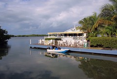 Breakfast on the Bay (PelicanPete) Tags: thanksgiving morning florida southflorida monroecounty fla floridakeys 2016 unitedstates usa islandchain us1 islamoradaflorida lorelei restaurant cabanabar bay gulfofmexico westside calm quiet peaceful nature beauty color manatees birds fish tarpon boat reflection clouds cloudscape palmtrees winter outdoor floridabay breakfastonthebay overseashighway