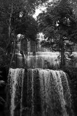 Tasmania: Russell Falls (jswensen2012) Tags: waterfall australia tasmania mountfieldnationalpark russellfalls rainforest