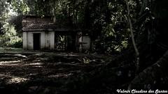 Haunted House - Casa assombrada (VCLS) Tags: brasil brazil casa house vcls valmir valmirclaudinodossantos valedoparaiba tree rvore floresta forest dark sombra shadow ghost fantasma goosebumps calafrio explore