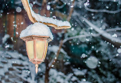 First Snow (UniquelyHis4ever) Tags: snow lamppost lamp narnia snowing winter snowy snowday lampstand lantern christmas holiday cold