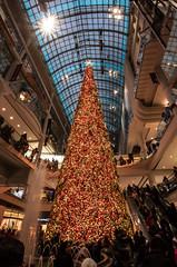 Big Cone of Lights (Jay:Dee) Tags: topw toronto photo walks christmas tree decoration festive