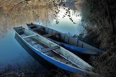 IMG_3186 (ornella sartore) Tags: fiume barche colori allaperto