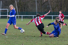 Altrincham LFC vs Stockport County LFC - December 2016-182 (MichaelRipleyPhotography) Tags: altrincham altrinchamfc altrinchamlfc altrinchamladies alty amateur ball community fans football footy header kick ladies ladiesfootball league merseyvalley nwrl nwrldivsion1south nonleague pass pitch referee robins shoot shot soccer stockportcountylfc stockportcountyladies supporters tackle team womensfootball