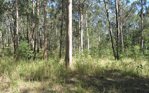 Red Root Road, Pillar Valley NSW 2462