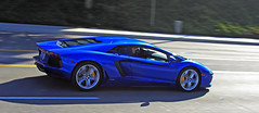 Lamborghini Aventador (dylancook44) Tags: blue red panorama bunny ford honda gold spyder a3 rocket rays jaguar mustang gt a4 lamborghini g35 350z matte nsx a6 s4 gallardo sl65 c6 r8 sl55 s7 widebody s6 mugen gt500 sl500 c7 weds te37 allroad g37 rs5 gt1000 sl63 aventador