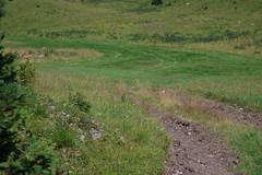 Drrenstein (Harald Reichmann) Tags: berg sommer drrenstein doline kltepol grnloch