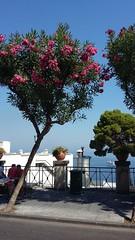 leanders (axelina2000) Tags: summer capri bluesky leanders